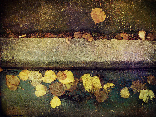 glitter in the gutter by Catherine...