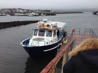 Dingle Boat Cruise