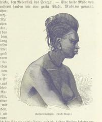 Image taken from page 65 of 'Das neue Buch der Reisen und Entdeckungen. O Spamer's illustrirte Bibliothek der Länder & Völkerkunde, etc. (Unter redaktion von F. von Hellwald und R. Oberländer.) vol. 1'