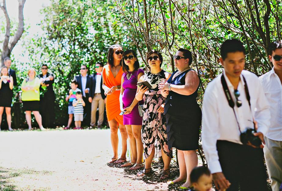 wedding261