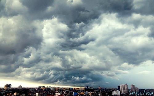 storm-signok
