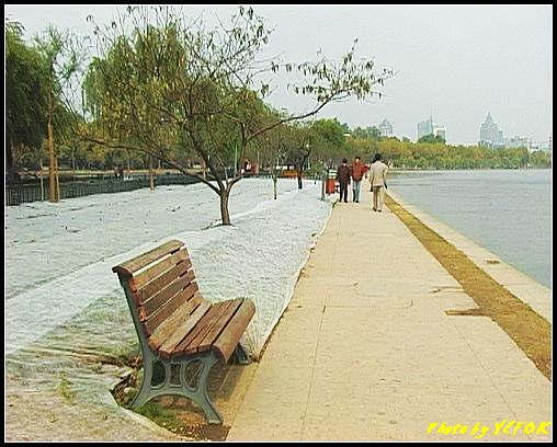 杭州 西湖 (其他景點) - 143 (從白堤上回望北山路方向)