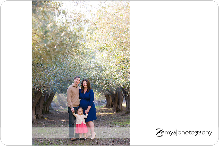 b-B-2014-02-23-09 - Zemya Photography: Bay Area pregnancy photographer