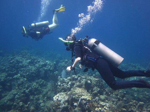 Diving on Roatan