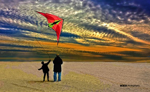 Let the kite fly..