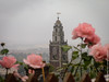 Roses and Shandon Bells