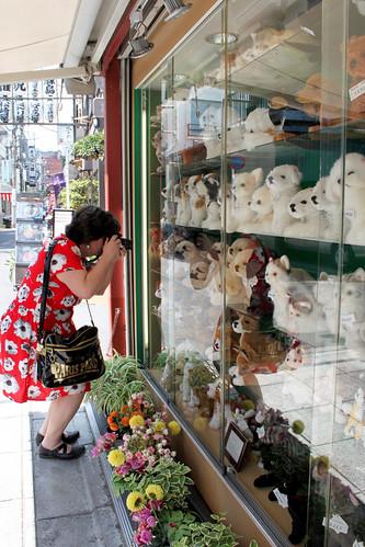 Dog Shop