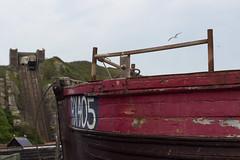 Hastings view