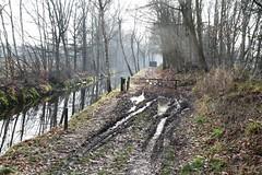 Hertogenpad_LAW13_NL_Wandelen_d8_7