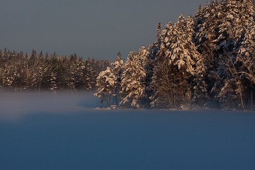 morning winter lake snow water landscape photo woods forrest sweden sverige södermanlandslän virlången