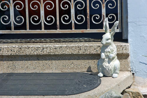 quizical stone rabbit.jpg