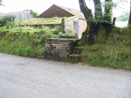 Stondin Laeth, Brynbedw Caledrhydiau