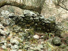 Alentours du site : ruines de bergerie à l'Est