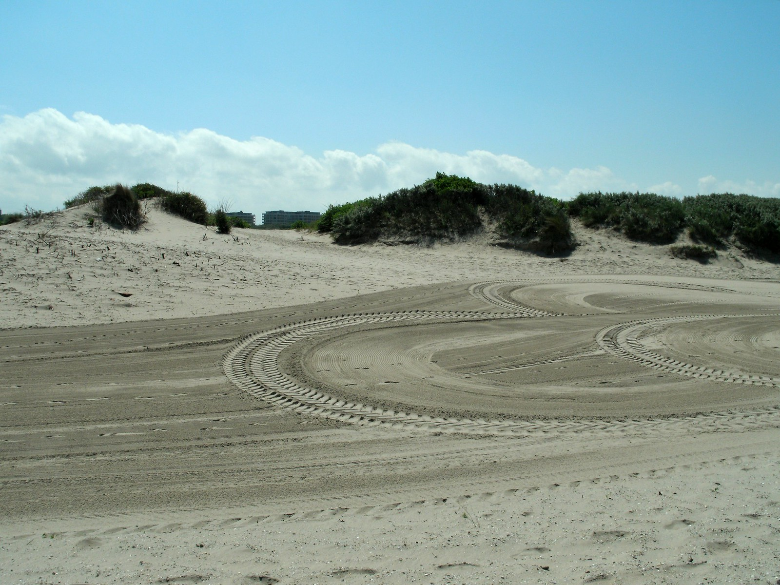 Marks in the sand show that vehicles have driven on the beach.
