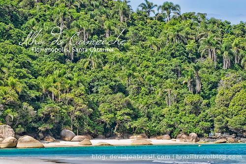 faltan 327 días para el mundial: Ilha do Campeche