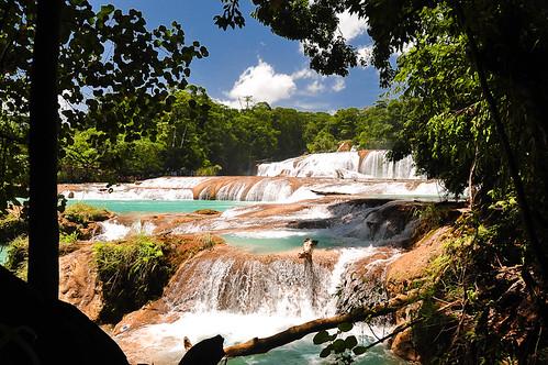 Cascadas de Agua Azul (16)