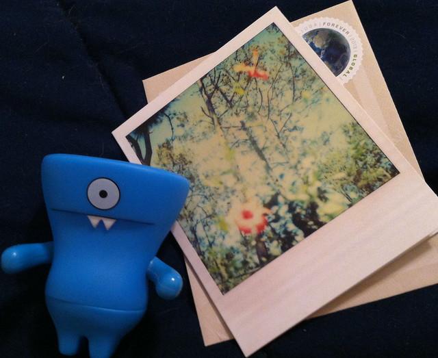 Floral Polaroid
