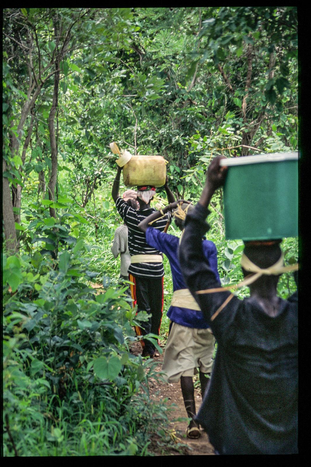 Senegal - Sur le chemin des moissons