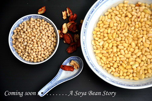 soya bean story