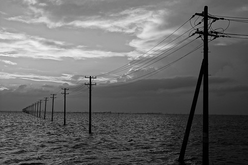 Rich Tone Monochrome utility poles into the sea 16