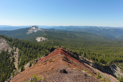 oregon forest pacific hiking peak crest diamond mount trail national pct wilderness willamette umpqua thielsen deshutes wsweekly46