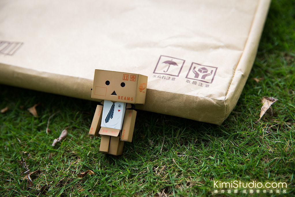 Danboard bag-011