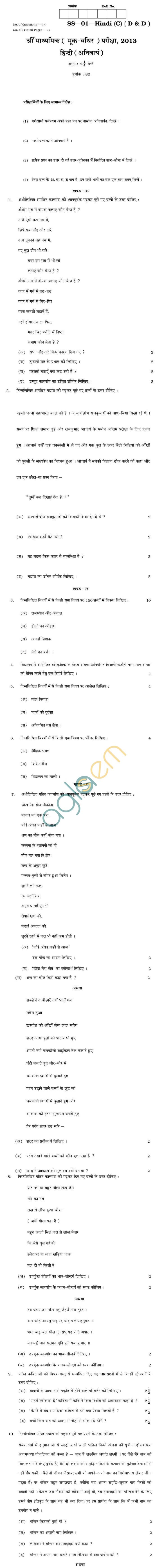Rajasthan Board Sr. Secondary Hindi (C) (DD) Question Paper 2013