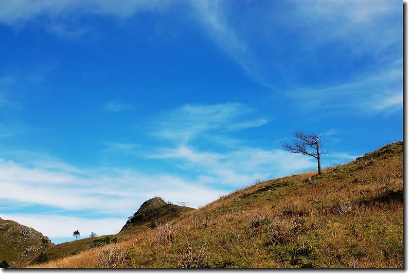七彩湖草原 3