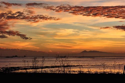 sunset northerncalifornia mounttamalpais napacounty greenislandroad napasonomamarshes