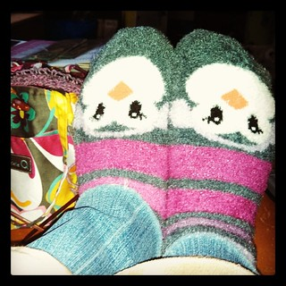 Snow Day! Great for comfy #penguin #socks, #knitting and dog cuddles! #winter #dellaQ