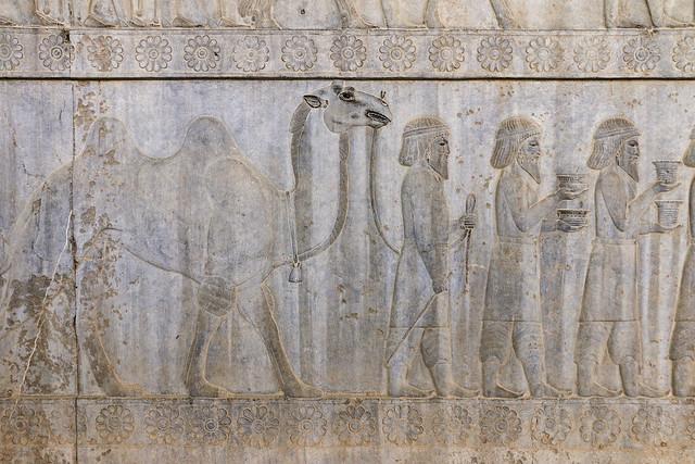 Camel relief of the eastern stairs of the Apadana, Persepolis, Iran ペルセポリス遺跡、アパダーナ東階段のラクダのレリーフ