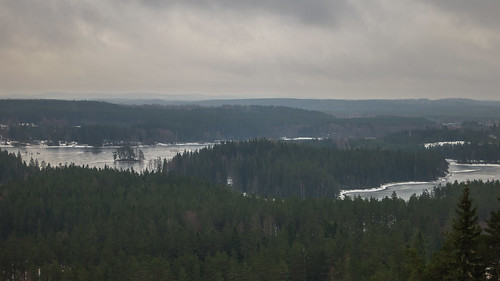 trees winter lake sweden isaberg