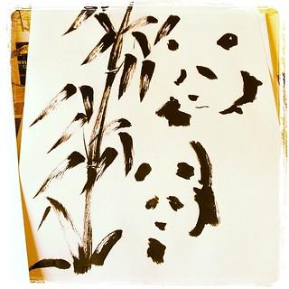 Panda #longboard