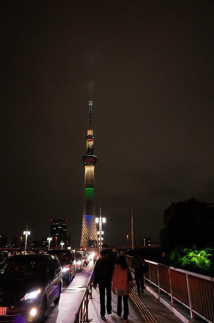 Tokyo Hotaru Light Symphony 2013-32