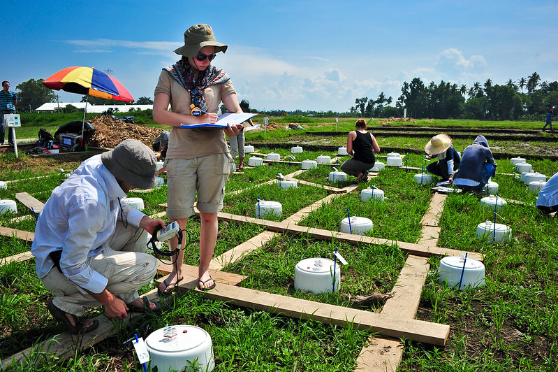 Irri news young scientists take on multifaceted climate for Soil zoology