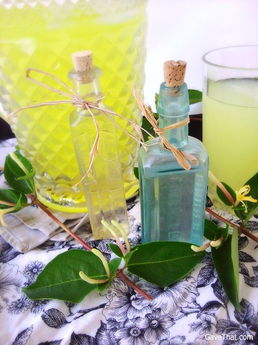 Honeysuckle Lemonade plus how to make honeysuckle floral water hostess gifts and favors by gift style blog Gave That