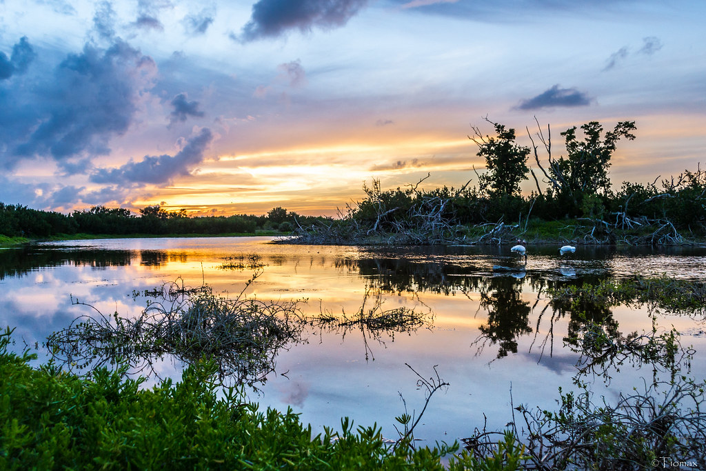 Sunset in the Glades.