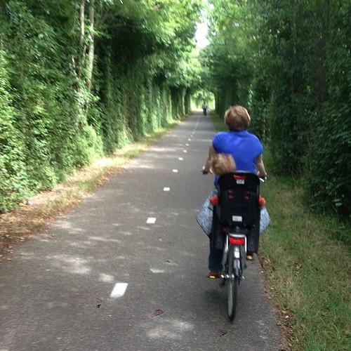 Erster richtiger Tag im Urlaub: mit dem Fahrrad durch tolle Alleen fahren.