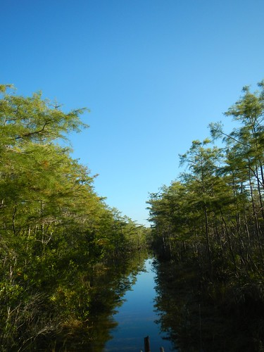 water sunrise florida swamp watershed everglades nationalparks swampbuggy acquifer thingstpdoinflorida