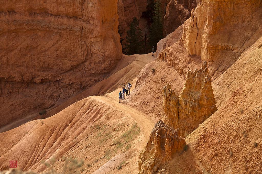 ブライスキャニオン国立公園の観光ルートの風景