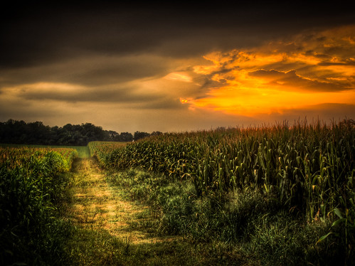 road summer sky sun storm field wisconsin clouds rural drive evening corn skies painted farming stormy olympus hdr photomatix greencounty tonemapped epl5
