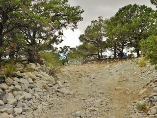 Lake Como Road at 20 min of Hiking
