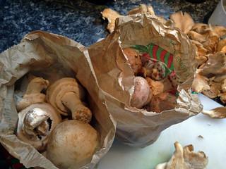 Cobbler aux champignons