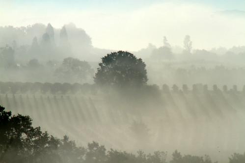 Vignes de Monbazillac (24) by montestier