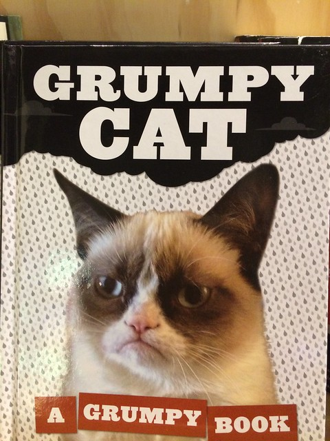 Grumpy Cat Book at Urban Outfitters  Flickr - Photo Sharing!