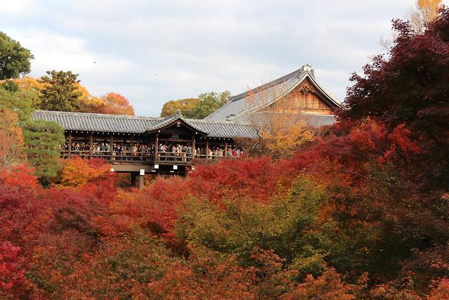 東福寺 (41)