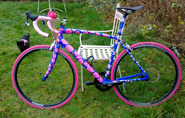 Art race-bike. Better in proper light - comes with colour coordinated cat!