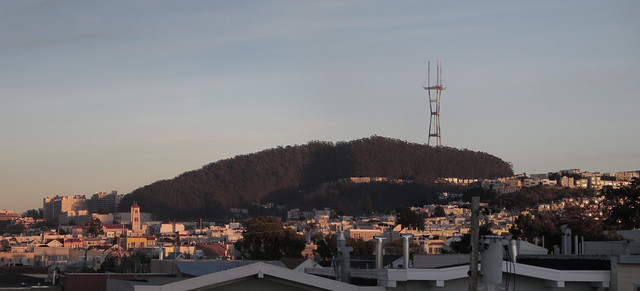 Mount Sutro Open Space Reserve and Sutro Tower POV 1333 26th; The Sunset, San Francisco.  December 9 , 2013