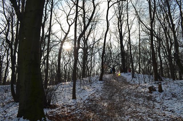 Snow day in Pankow Volkspark Schönholzer Heide snowy hill