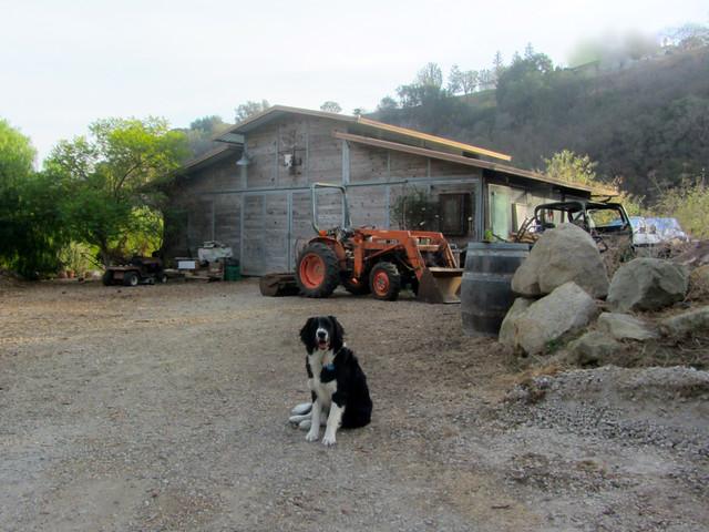 Walt up at the barn